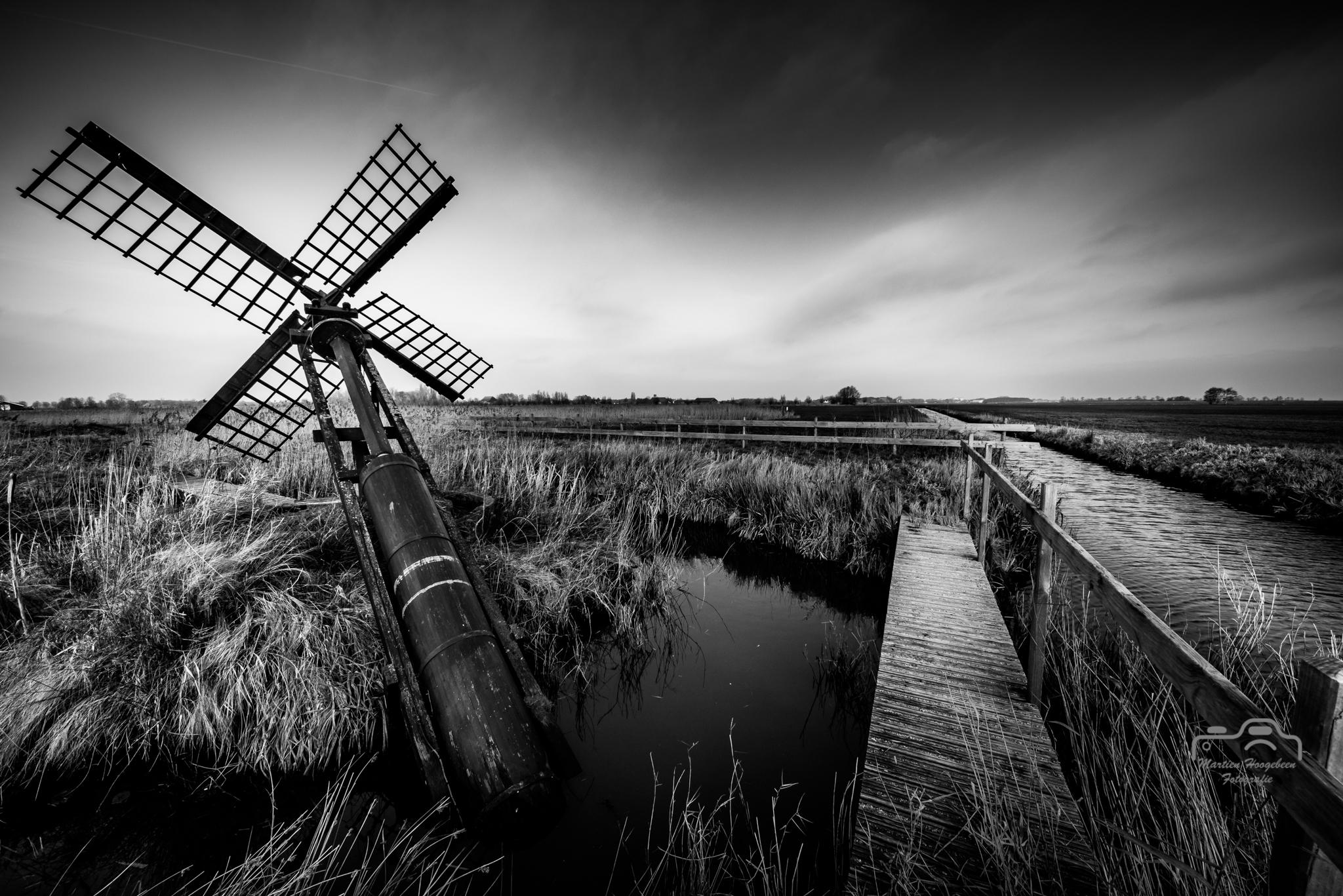 Natuurgebied Sanpoel, Friesland