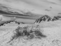 Duinen, Ameland
