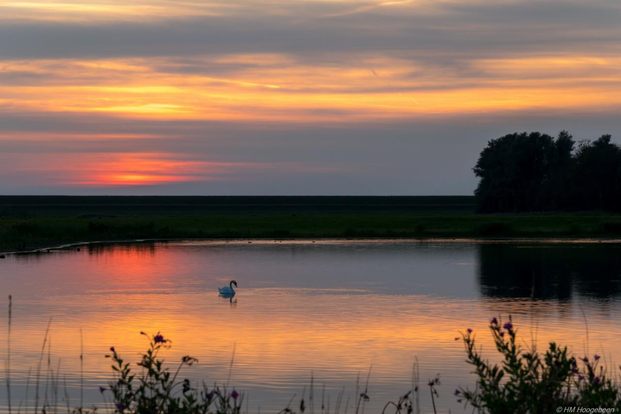 Sunset Rotterdamse Hoek Noordoostpolder