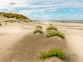 Strand, paal 17 Ameland
